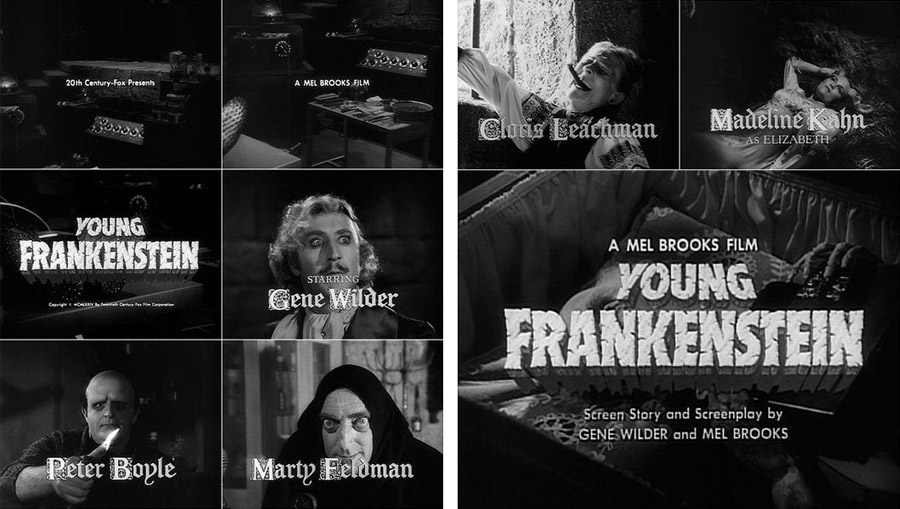Young Frankenstein film titles